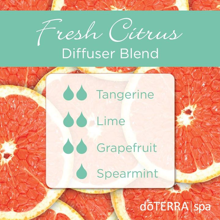 Fresh Citrus Diffuser Blend, Essential Oils, Tangerine, Lime, Grapefruit, Spearmint, doTERRA
