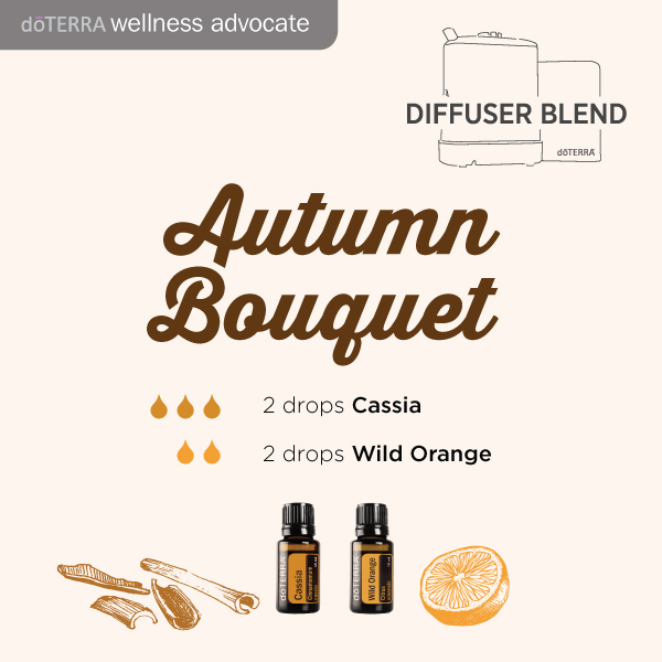 essential oil diffuser_blend-autumn-bouquet-cassia-wild-orange